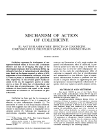 Mechanism of action of colchicine.