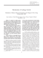 Mechanisms of cartilage growthModulation of balance between proteoglycan and collagen in vitro using chondroitinase ABC.