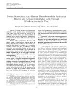 Mouse monoclonal antihuman thrombomodulin antibodies bind to and activate endothelial cells through NF-╨Ю╤ФB activation in vitro.