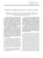 Production of endogenous antibiotics in articular cartilage.