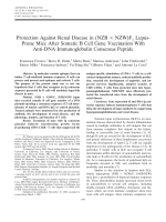 Protection against renal disease in NZB  Ф NZWF1 lupus-prone mice after somatic B cell gene vaccination with anti-DNA immunoglobulin consensus peptide.
