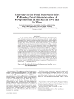 Recovery in the fetal pancreatic islet following fetal administration of streptozotocin in the rat in vivo and in vitro.