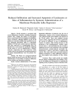 Reduced infiltration and increased apoptosis of leukocytes at sites of inflammation by systemic administration of a membrane-permeable I╨Ю╤ФB╨Ю┬▒ repressor.