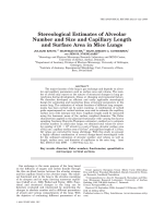 Stereological Estimates of Alveolar Number and Size and Capillary Length and Surface Area in Mice Lungs.