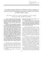 Tract-based spatial statistics on diffusion tensor imaging in systemic lupus erythematosus reveals localized involvement of white matter tracts.