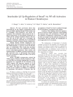 Interleukin-1  up-regulation of Smad7 via NF-╨Ю╤ФB activation in human chondrocytes.
