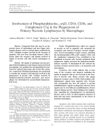 Involvement of phosphatidylserine ╨Ю┬▒v 3 CD14 CD36 and complement C1q in the phagocytosis of primary necrotic lymphocytes by macrophages.