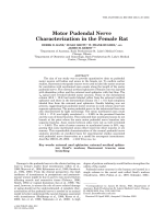 Motor pudendal nerve characterization in the female rat.