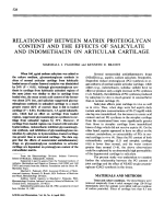Relationship between matrix proteoglycan content and the effects of salicylate and indomethacin on articular cartilage.