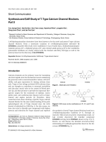 Synthesis and SAR Study of T-Type Calcium Channel Blockers. Part II