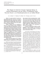 The impact of anterior cruciate ligament injury on lubricin metabolism and the effect of inhibiting tumor necrosis factor ╨Ю┬▒ on chondroprotection in an animal model.