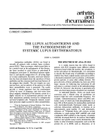 The lupus autoantigens and the pathogenesis of systemic lupus erythematosus.