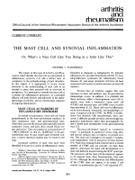 The mast cell and synovial inflammation.