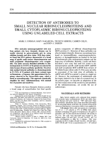 Detection of antibodies to small nuclear ribonucleoproteins and small cytoplasmic ribonucleoproteins using unlabeled cell extracts.