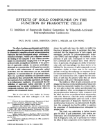 Effects of gold compounds on the function of phagocytic cells.