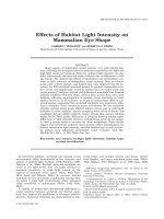 Effects of Habitat Light Intensity on Mammalian Eye Shape.