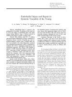 Endothelial injury and repair in systemic vasculitis of the young.