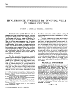 Hyaluronate Synthesis by Synovial Villi in Organ Culture.