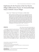 Implications for the functions of the four known midgut differentiation factorsAn immunohistologic study of Heliothis virescens midgut.