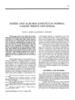Iodide and albumin kinetics in normal canine wrists and knees.