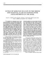Levels of Keratan Sulfate in the Serum and Synovial Fluid of Patients With Osteoarthritis of the Knee.
