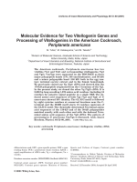 Molecular evidence for two vitellogenin genes and processing of vitellogenins in the American cockroach  Periplaneta americana.