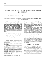 Native Type II Collagen-Induced Arthritis in the Rat.