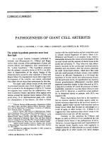 Pathogenesis of giant cell arteritis.