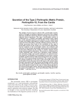 Secretion of the type 2 peritrophic matrix protein  peritrophin-15  from the cardia.