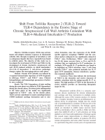 Shift from toll-like receptor 2 TLR-2 toward TLR-4 dependency in the erosive stage of chronic streptococcal cell wall arthritis coincident with TLR-4mediated interleukin-17 production.