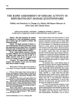The Rapid Assessment of Disease Activity in Rheumatology Radar Questionnaire.