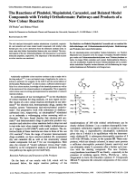 The Reactions of Pindolol Mepindolol Carazolol and Related Model Compounds with Triethyl OrthoformatePathways and Products of a New Colour Reaction.