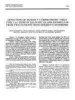 Detection of human t lymphotropic virus type i tax gene in salivary gland epithelium from two patients with sjgren's syndrome.