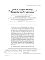 Effects of Advanced Age on the Morphometry and Degenerative State of the Cervical Spine in a Rat Model.