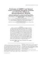 Evaluation of rhBMP-2 and Natural Latex as Potential Osteogenic Proteins in Critical Size Defects by Histomorphometric Methods.