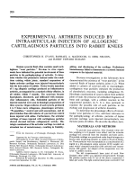 Experimental arthritis induced by intraarticular injection of allogenic cartilaginous particles into rabbit knees.