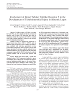 Involvement of renal tubular toll-like receptor 9 in the development of tubulointerstitial injury in systemic lupus.