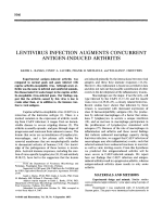 Lentivirus infection augments concurrent antigen-induced arthritis.