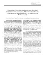 Monosodium urate monohydrate crystalrecruited noninflammatory monocytes differentiate into M1-like proinflammatory macrophages in a peritoneal murine model of gout.