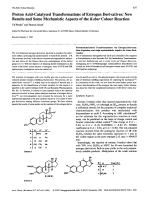 Proton Acid-Catalysed Transformations of Estrogen DerivativesNew Results and Some Mechanistic Aspects of the Kober Colour Reaction.