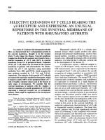 Selective expansion of t cells bearing the ╨Ю╤Ц╨Ю╥С receptor and expressing an unusual repertoire in the synovial membrane of patients with rheumatoid arthritis.