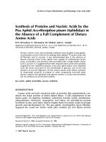 Synthesis of proteins and nucleic acids by the pea aphid Acyrthosiphon pisum (aphididae) in the absence of a full complement of dietary amino acids.