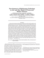 Development of multiorgan pathology in the wpk rat model of polycystic kidney disease.