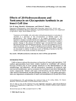 Effects of 20-hydroxyecdysone and tunicamycin on glycoprotein synthesis in an insect cell line.