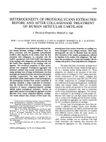 Heterogeneity of proteoglycans extracted before and after collagenase treatment of human articular cartilageI. Physical properties related to age