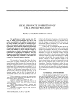 Hyaluronate inhibition of cell proliferation.