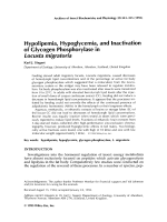 Hypolipemia  hypoglycemia  and inactivation of glycogen phosphorylase in Locusta migratoria.