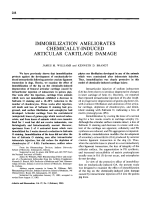 Immobilization ameliorates chemically-induced articular cartilage damage.