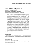 Mode of action of proctolin on locust visceral muscle.