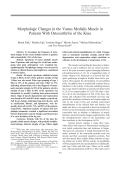 Morphologic changes in the vastus medialis muscle in patients with osteoarthritis of the knee.